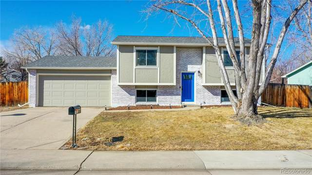 10631 Quail Court, Westminster, CO 80021 (#9604943) :: Hudson Stonegate Team