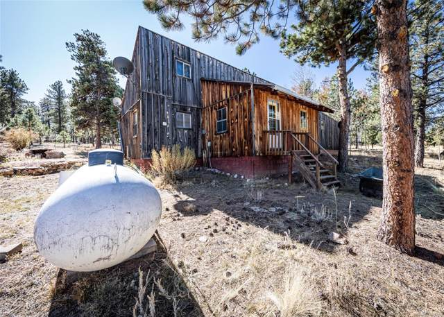 7600 Doe Valley Road, Guffey, CO 80820 (#9610934) :: Bring Home Denver with Keller Williams Downtown Realty LLC