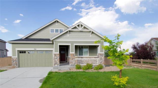 784 Ellsworth Court, Castle Rock, CO 80104 (#9616564) :: The Peak Properties Group