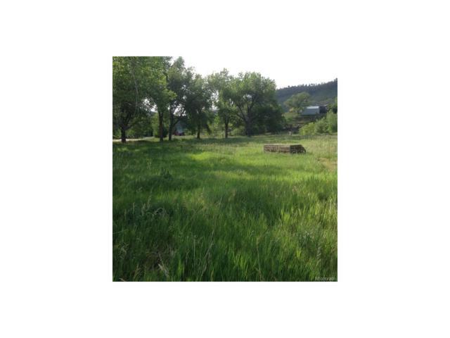 195 J J Kelly Road, Lyons, CO 80540 (MLS #9617165) :: 8z Real Estate