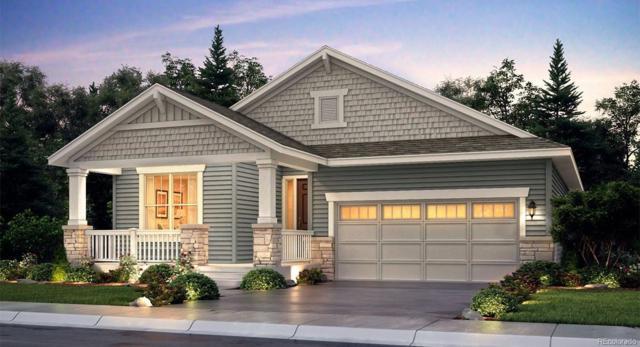 2378 Provenance Street, Longmont, CO 80504 (MLS #9620954) :: 8z Real Estate