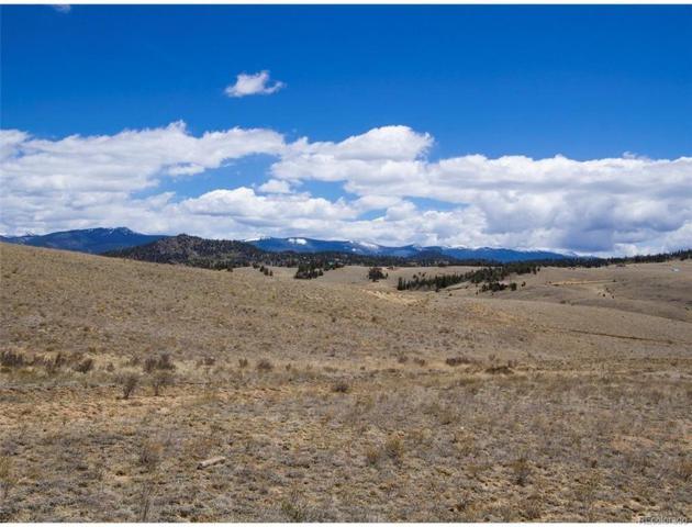 263 Albino Road, Como, CO 80432 (#9627563) :: Compass Colorado Realty