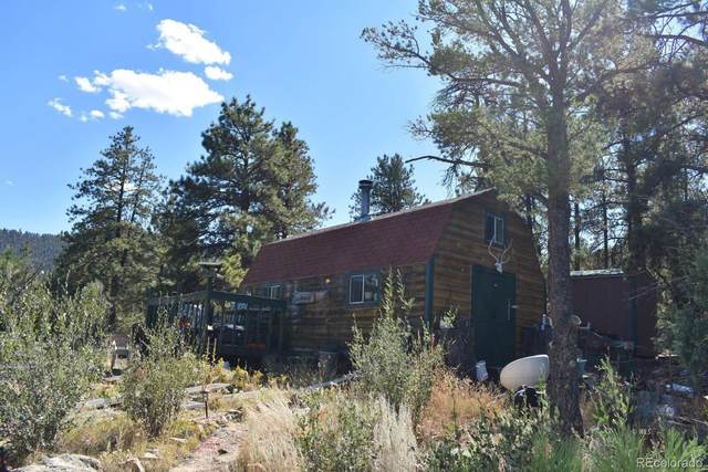 1238 Discovery Road, Westcliffe, CO 81252 (#9630148) :: The DeGrood Team