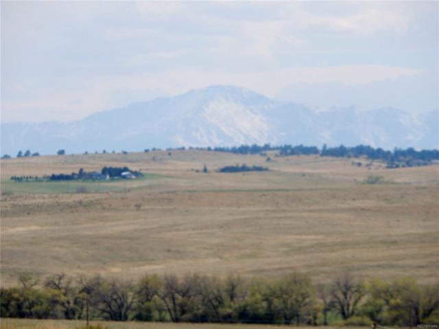11500 Indian Hills Circle, Kiowa, CO 80117 (#9634377) :: Hometrackr Denver