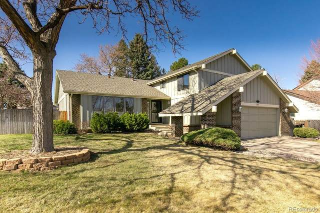 10101 Zenobia Circle, Westminster, CO 80031 (#9639184) :: iHomes Colorado