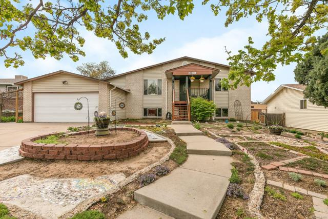 3189 S Mobile Way, Aurora, CO 80013 (#9643210) :: The DeGrood Team