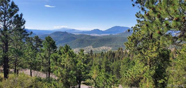 24825 Shiloh Lane Lane, Conifer, CO 80433 (#9643772) :: The Dixon Group