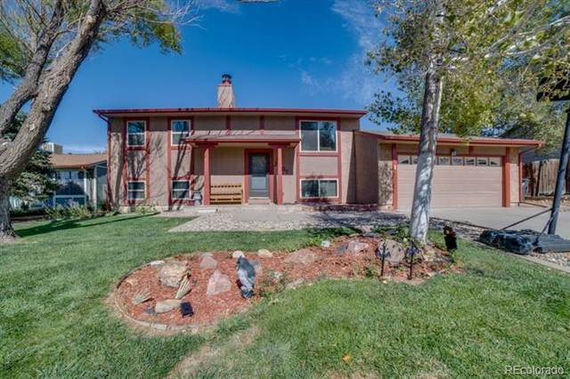 2307 Newcastle, Pueblo, CO 81008 (#9644607) :: Wisdom Real Estate