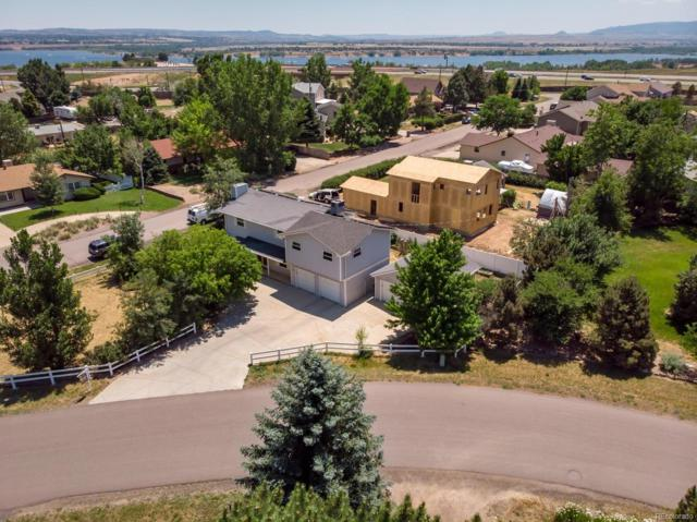 7950 W Stene Drive, Littleton, CO 80128 (#9646552) :: The Pete Cook Home Group