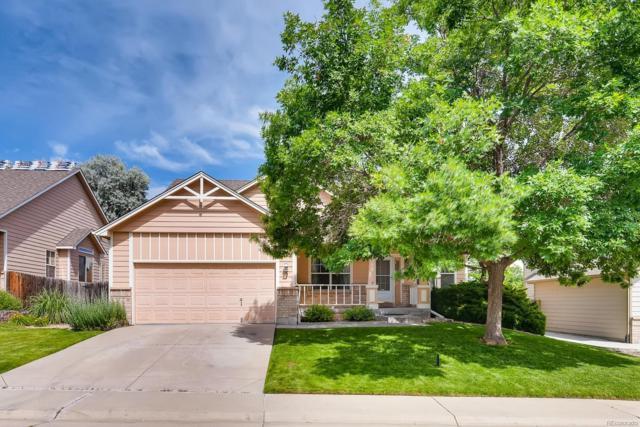 11620 Elizabeth Place, Thornton, CO 80233 (MLS #9649509) :: 8z Real Estate