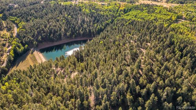 Lot 17 Woodland Road, Woodland Park, CO 80863 (#9654653) :: Finch & Gable Real Estate Co.