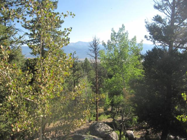 30144 Eagles Ridge, Buena Vista, CO 81211 (#9654962) :: The Peak Properties Group