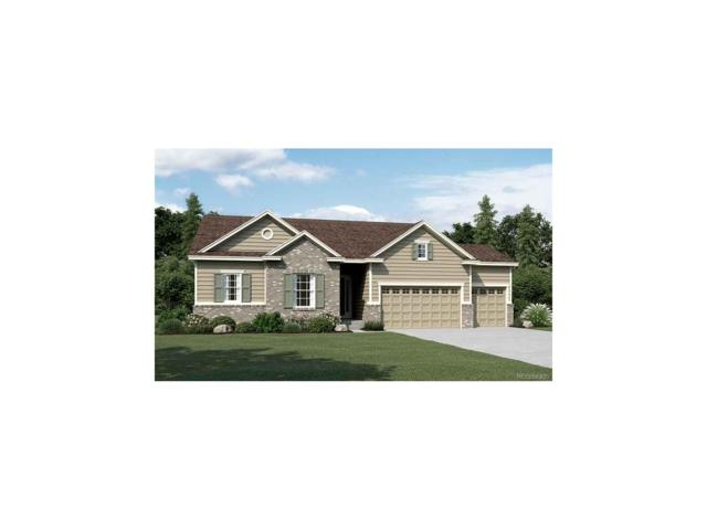 7159 S Riverwood Way, Aurora, CO 80016 (MLS #9658138) :: 8z Real Estate