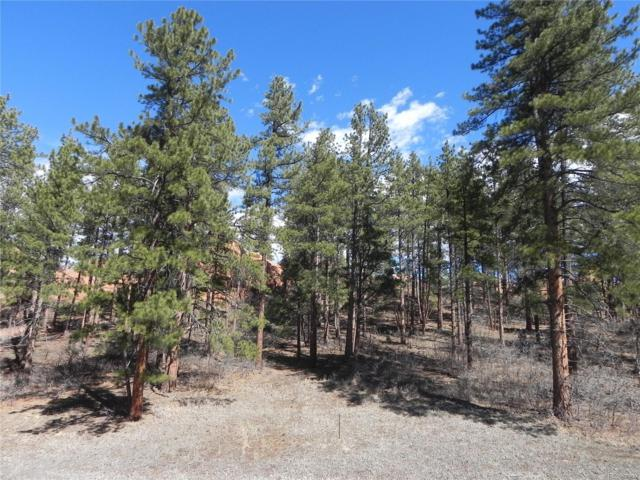 4805 Crow Drive, Larkspur, CO 80118 (#9660129) :: Harling Real Estate