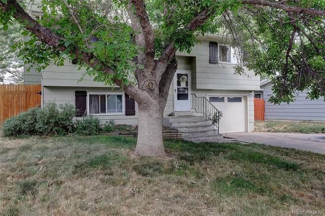 8209 Mummy Range Drive, Fort Collins, CO 80528 (MLS #9662676) :: 8z Real Estate