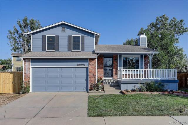8925 W Teton Circle, Littleton, CO 80128 (MLS #9668031) :: 8z Real Estate