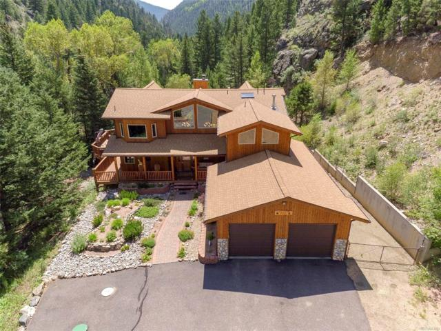 2651 Fall River Road, Idaho Springs, CO 80452 (#9668547) :: Structure CO Group