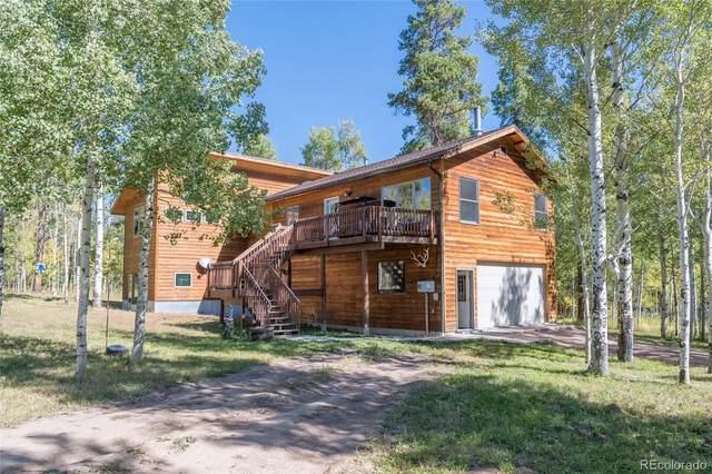 32930 Colt Trail, Oak Creek, CO 80467 (#9668662) :: The DeGrood Team