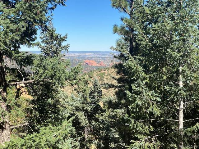 284 Neon Moon View, Manitou Springs, CO 80892 (#9670183) :: iHomes Colorado