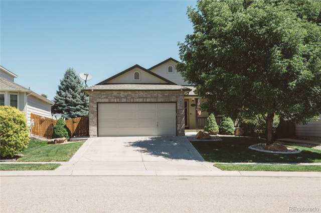 620 Kim Drive, Fort Collins, CO 80525 (MLS #9672006) :: 8z Real Estate