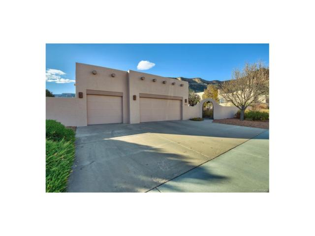 445 Whitetail Lane, Grand Junction, CO 81507 (MLS #9674985) :: 8z Real Estate