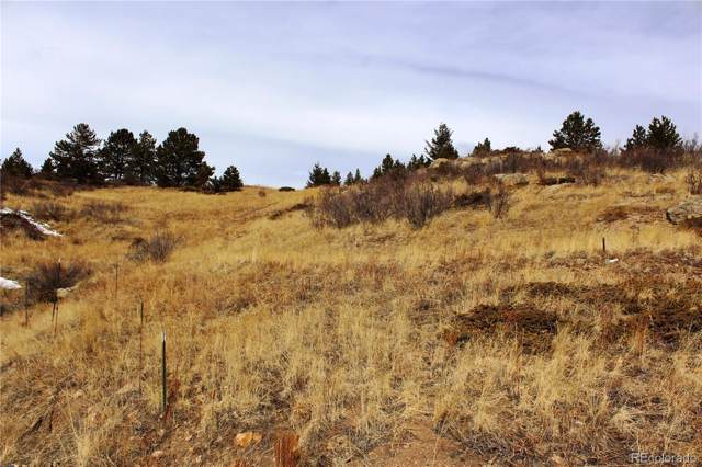 00 W Fourth Street, Central City, CO 80427 (MLS #9676701) :: 8z Real Estate