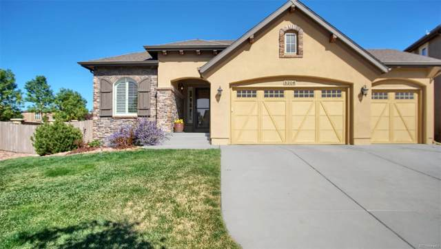 5206 Chimney Gulch Way, Colorado Springs, CO 80924 (MLS #9678585) :: 8z Real Estate
