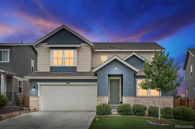 3875 Long Rifle Drive, Castle Rock, CO 80108 (#9679670) :: Wisdom Real Estate