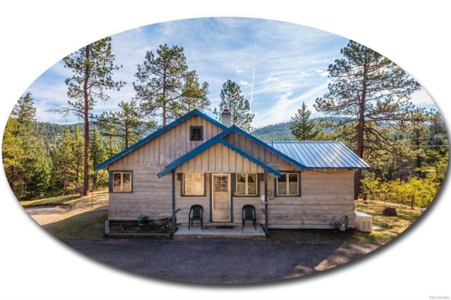 5601 Little Cub Creek Road, Evergreen, CO 80439 (#9685209) :: The Peak Properties Group
