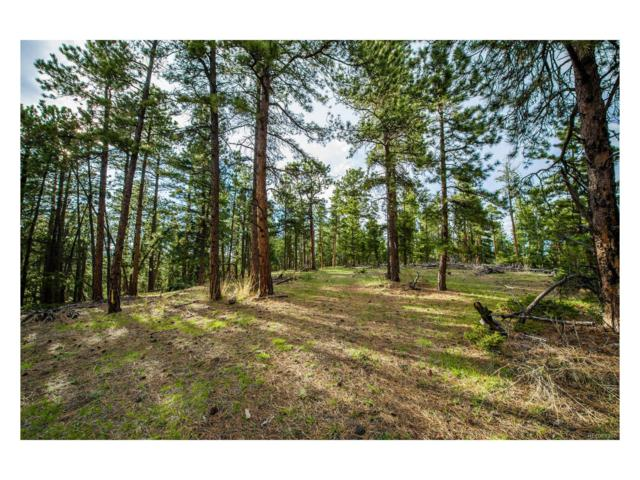 10250 Highway 73, Conifer, CO 80433 (MLS #9686176) :: 8z Real Estate