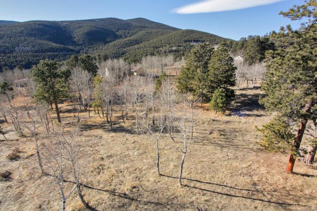 Old Squaw Pass Road, Evergreen, CO 80439 (#9690925) :: The Griffith Home Team