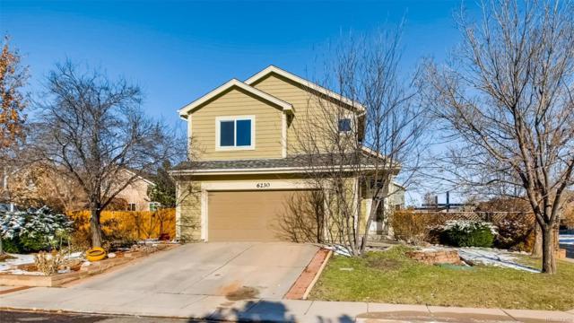 6230 Herriot Grove, Colorado Springs, CO 80922 (#9691219) :: Bring Home Denver