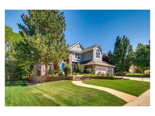 9778 Isabel Court, Highlands Ranch, CO 80126 (MLS #9699044) :: 8z Real Estate