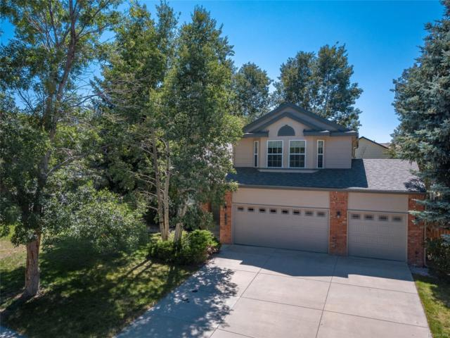 6655 Holt Drive, Colorado Springs, CO 80922 (#9703411) :: The City and Mountains Group
