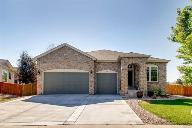 4180 Black Feather Trail, Castle Rock, CO 80104 (#9704809) :: Bring Home Denver