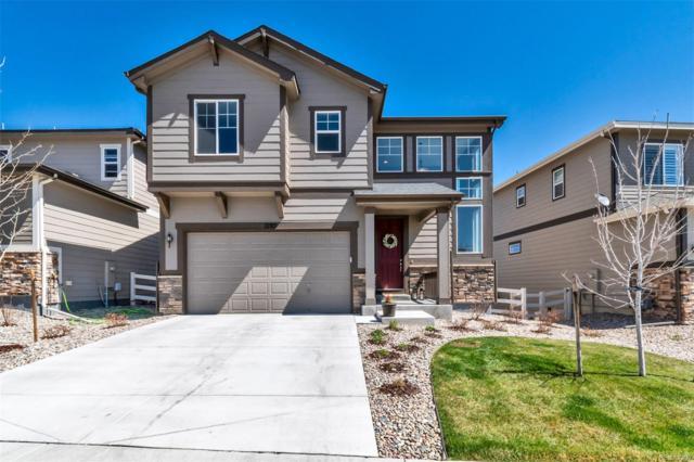2785 Garganey Drive, Castle Rock, CO 80104 (#9704879) :: House Hunters Colorado