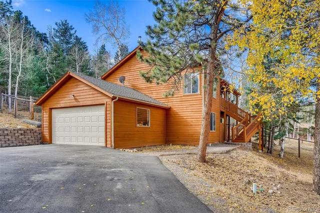 20 Yew Lane, Bailey, CO 80421 (#9705219) :: Mile High Luxury Real Estate