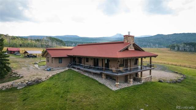 County Road 82, Slater, CO 81653 (MLS #9707976) :: Bliss Realty Group