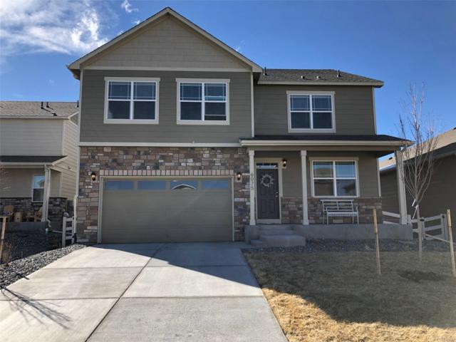 6075 Sun Mesa Circle, Castle Rock, CO 80104 (#9709622) :: The HomeSmiths Team - Keller Williams