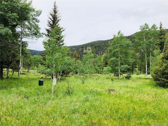 22 River Run Drive, Antonito, CO 81120 (MLS #9710608) :: Find Colorado