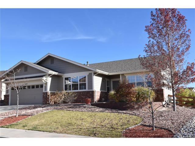 723 Witchhazel Court, Colorado Springs, CO 80921 (#9719182) :: Colorado Team Real Estate