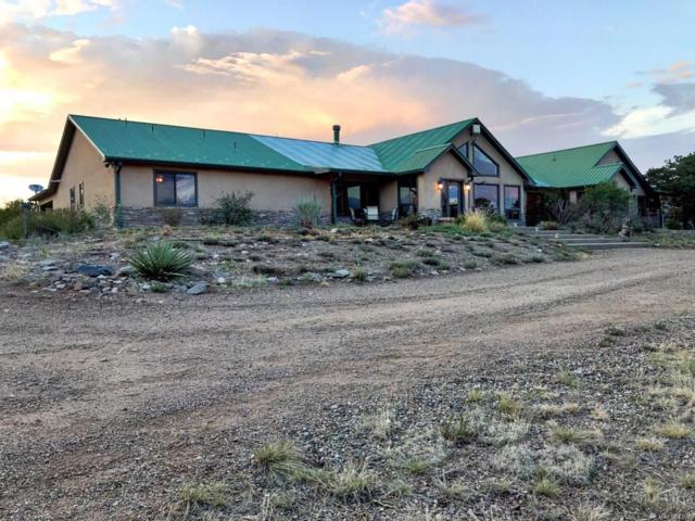 1006 Cr 634.2, Gardner, CO 81040 (#9723469) :: Bring Home Denver