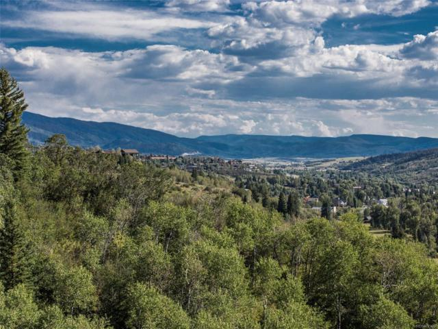 40355 County Road 36, Steamboat Springs, CO 80487 (#9723607) :: The Heyl Group at Keller Williams