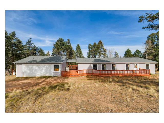 317 Deer Ridge Trail, Divide, CO 80816 (#9724227) :: Hometrackr Denver