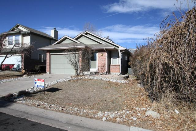 16901 Dandelion Way, Parker, CO 80134 (#9724488) :: The Gilbert Group