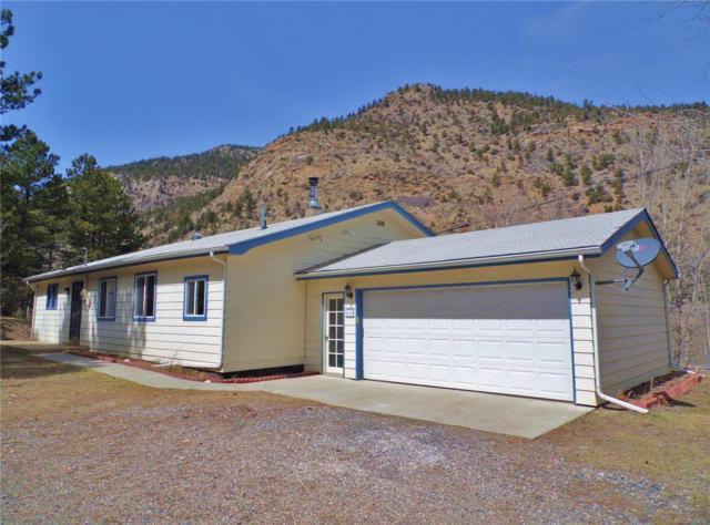 659 Silver Lakes Drive, Lawson, CO 80436 (#9725487) :: Wisdom Real Estate