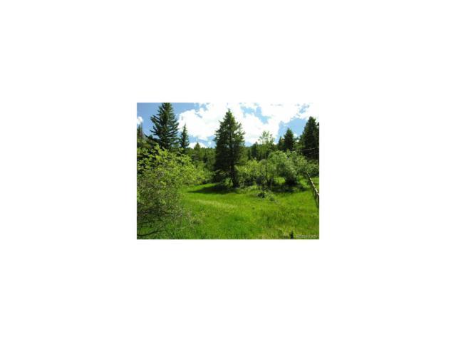 22931 Twin Ponds Trail, Morrison, CO 80465 (MLS #9727824) :: 8z Real Estate