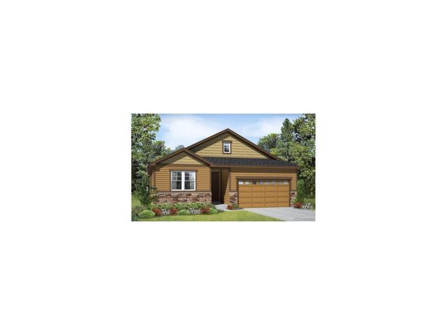 1829 Wyatt Drive, Windsor, CO 80550 (MLS #9729923) :: 8z Real Estate