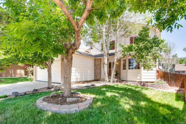 12524 Elm Lane, Broomfield, CO 80020 (#9731488) :: Sellstate Realty Pros