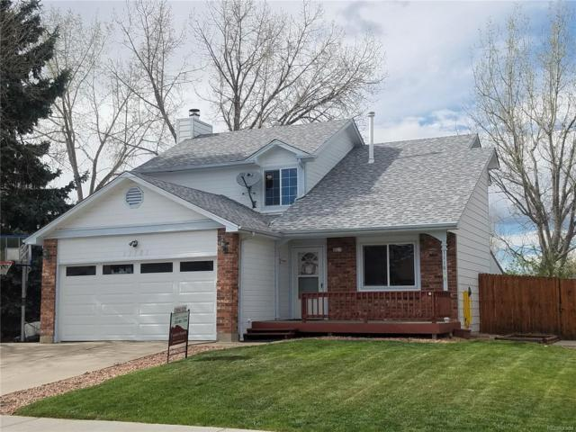 11181 W Brittany Drive, Littleton, CO 80127 (#9732524) :: House Hunters Colorado